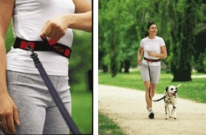 Riverton Chiropractor - Active Dog Walker Belt