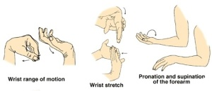 Tennis elbow exercises - Muscle Care - Riverton - WA